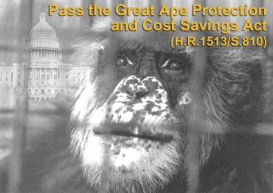 Legislative Postcard
